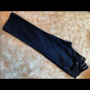 American Eagle Stretch Capri Skinny Jeans